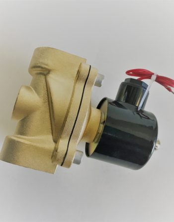 Brass Solenoid 120V FNPT